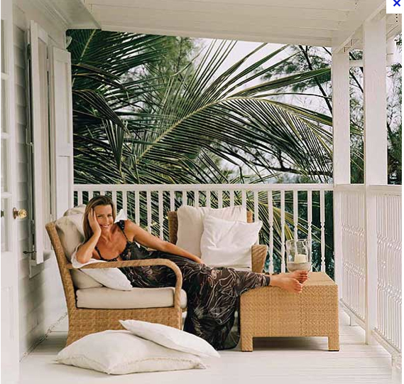 India Hicks | Stephanie Saunders Design